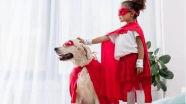 chiens heros