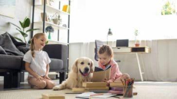 chiens d'assistance à l'apprentissage de la lecture