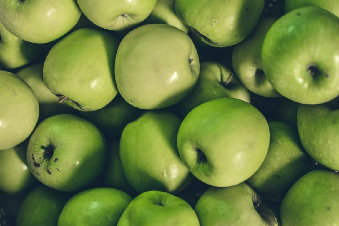 pommes fruits bons pour le chien