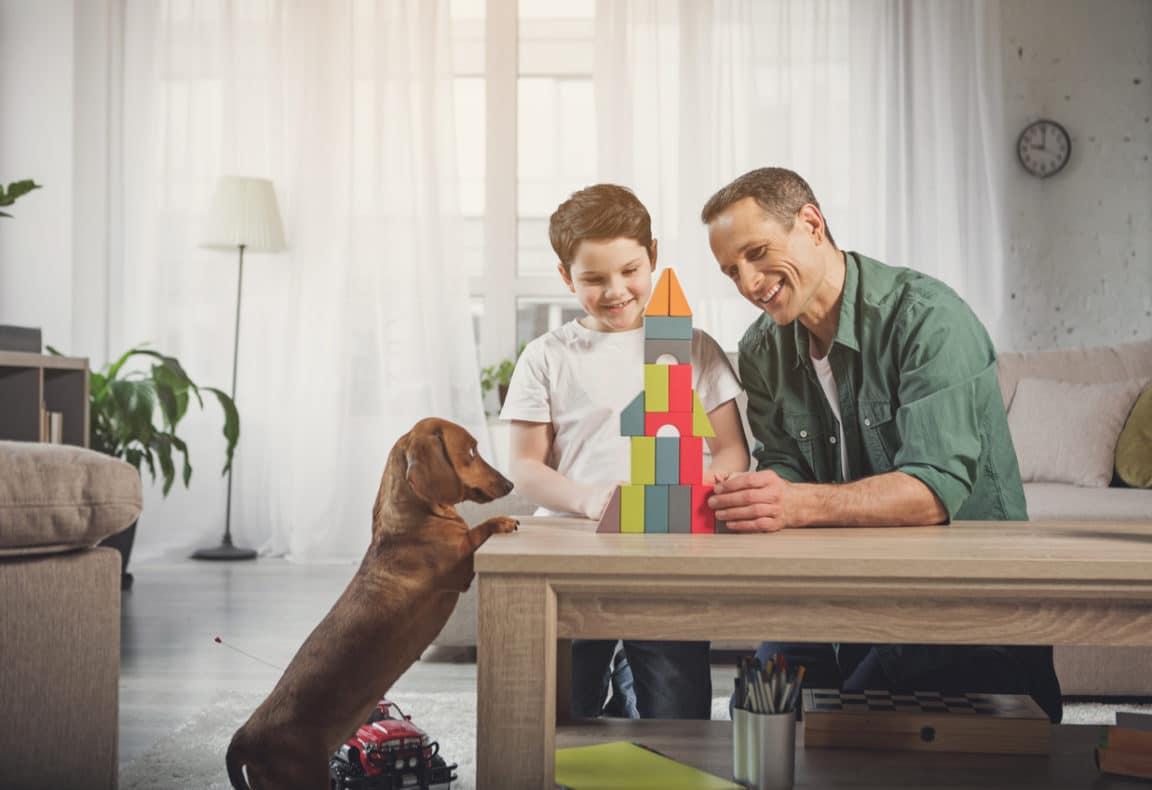 jeu avec chien