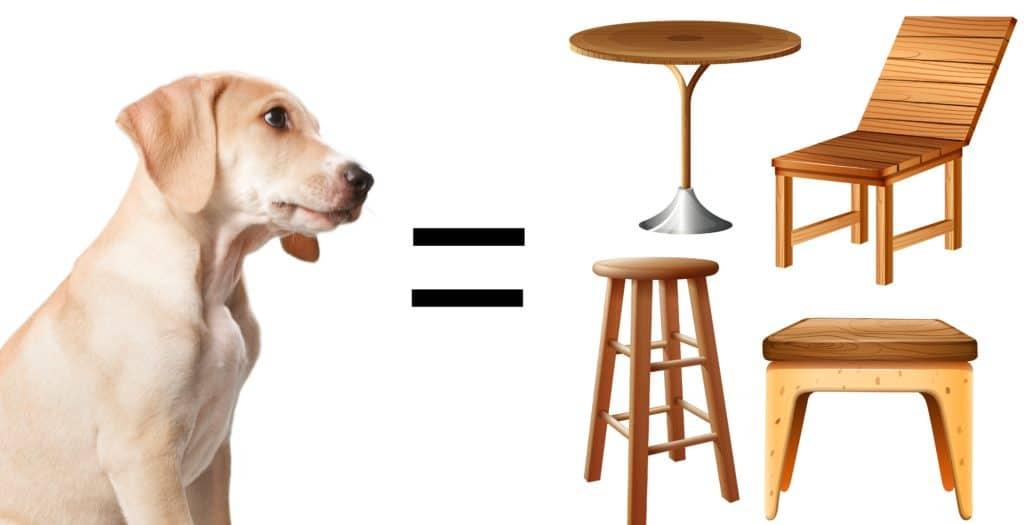 chien meuble