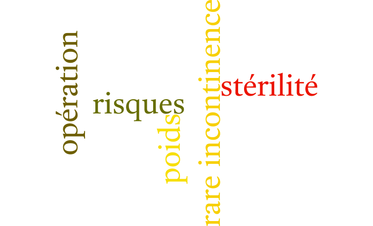 inconvénients stérilisation chienne