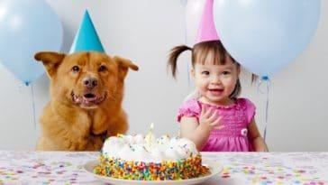 chien anniversaire
