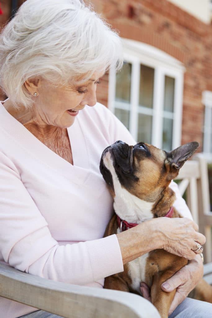 Senior personne âgée chien