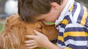 chien dans les bras soutien médiation canine