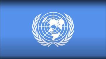 Les chiens de l'ONU