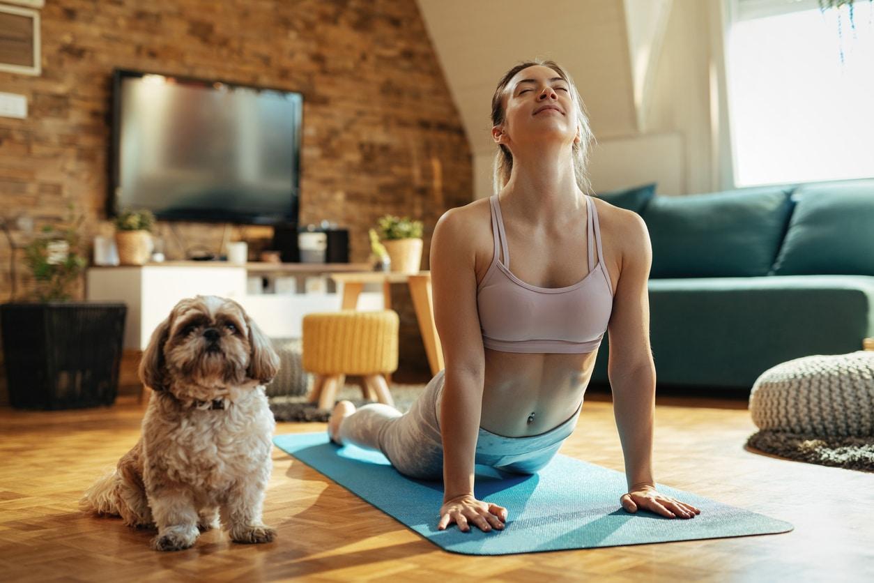 chien bien-être santé