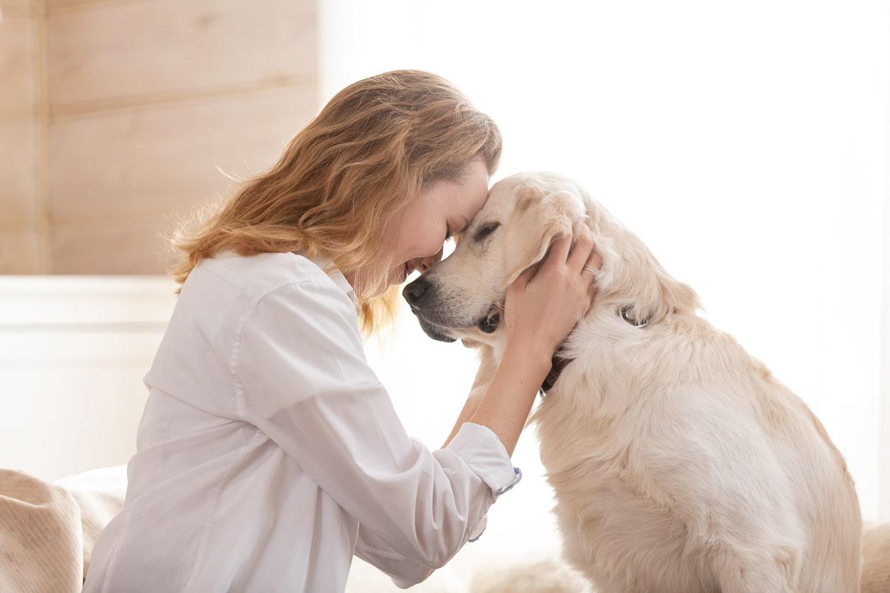 tête à tête entre un chien et sa maitresse