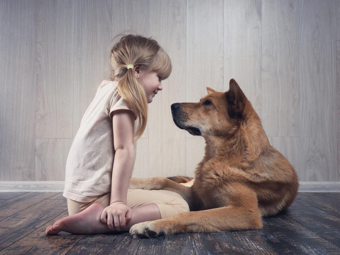 petite fille qui communique avec son chien