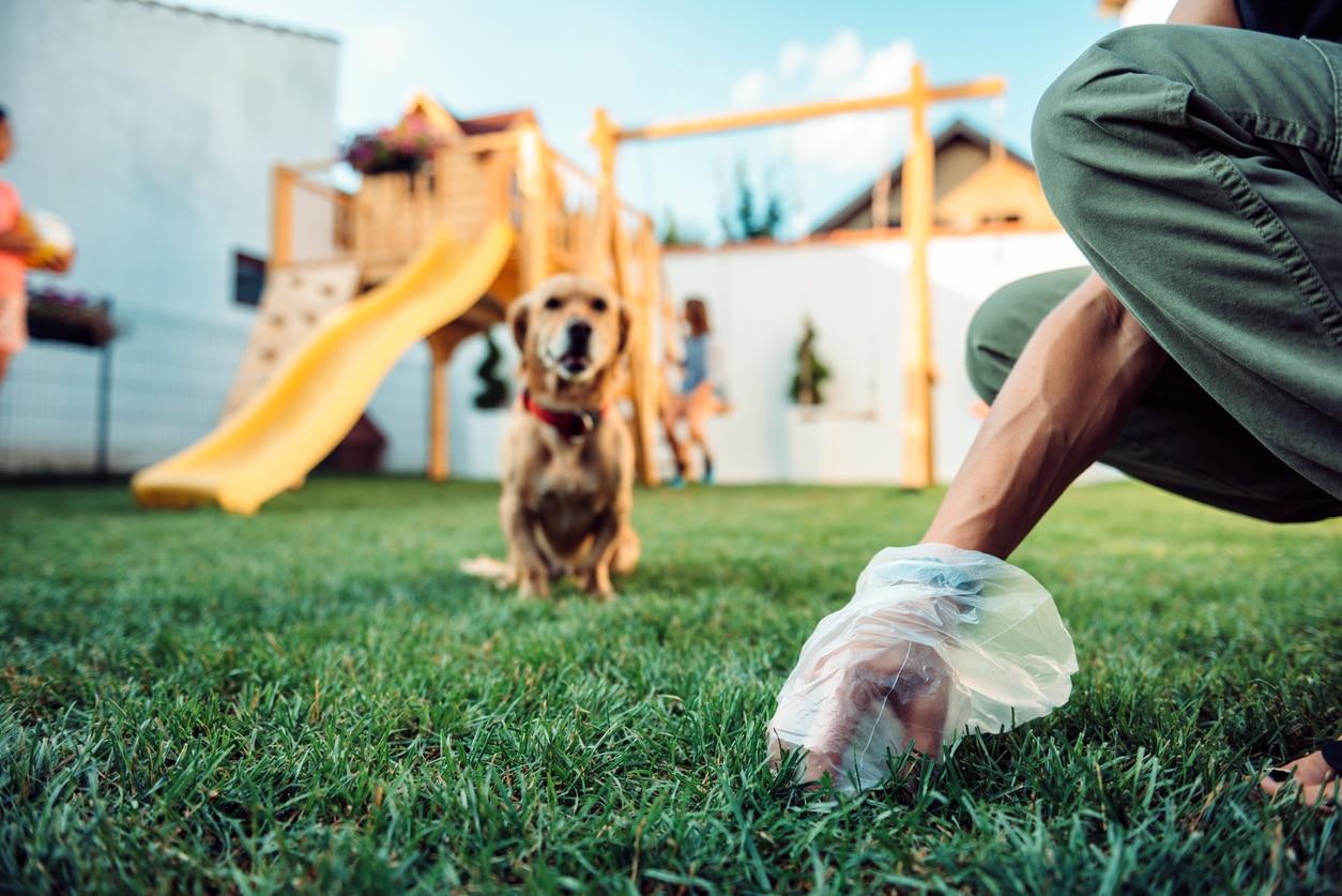 femme qui ramasse les selles de son chien