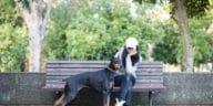 chien doberman avec sa maitresse assise sur un banc