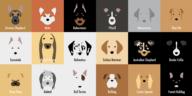 portraits minimalistes de races de chien