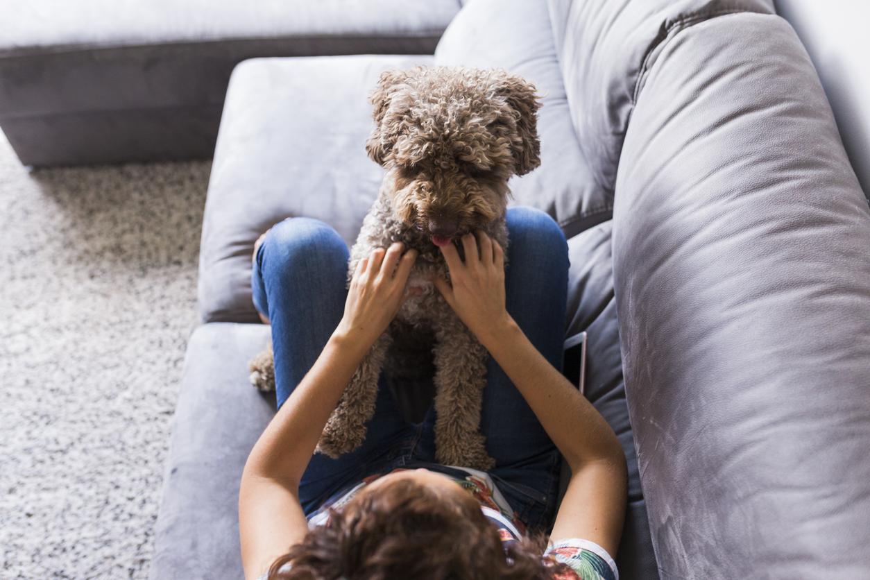 Chien assis sur sa maîtresse allongée sur le canapé