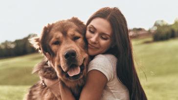 Gros chien faisant un câlin à sa maîtresse