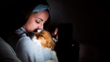 chien dans les bras de sa maitresse