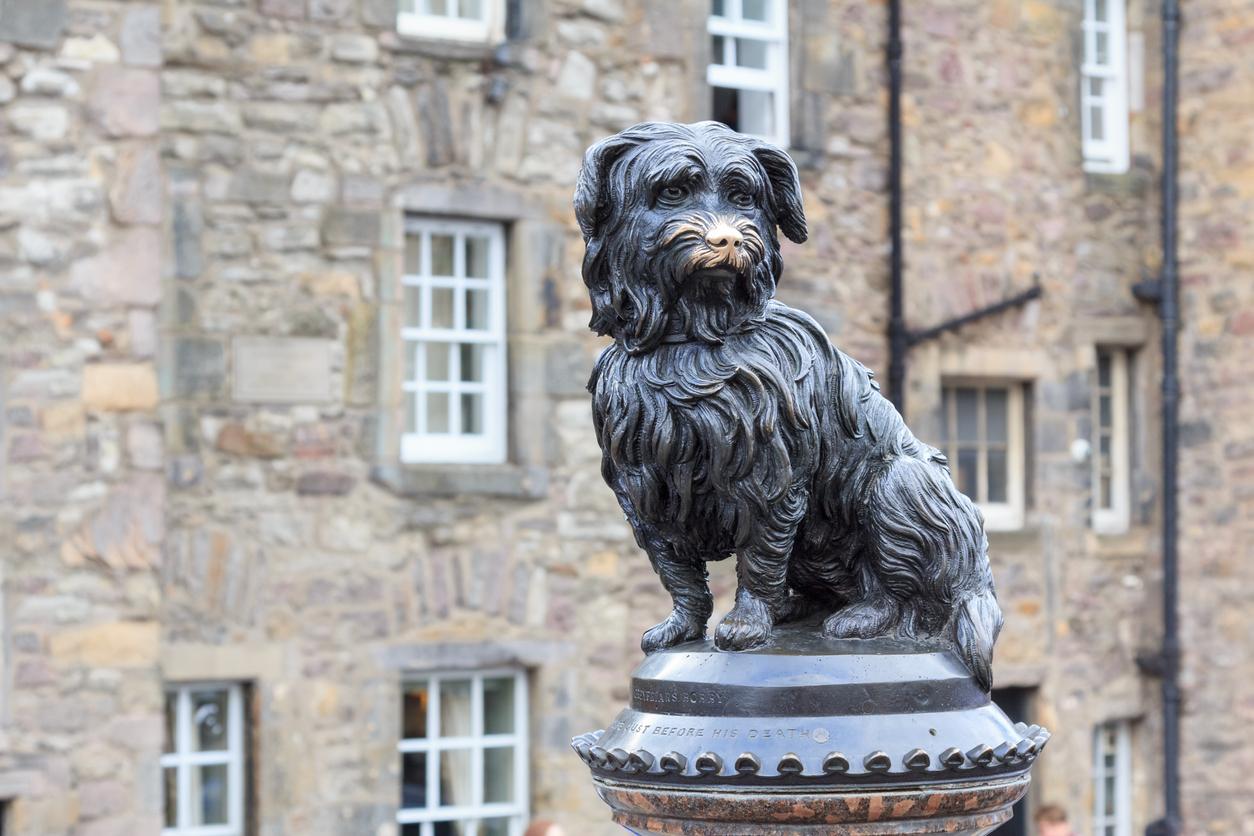 Statut Ecosse Skye Terrier Bobby