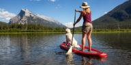 Chien faisant du Paddle avec sa maîtresse sur un lac