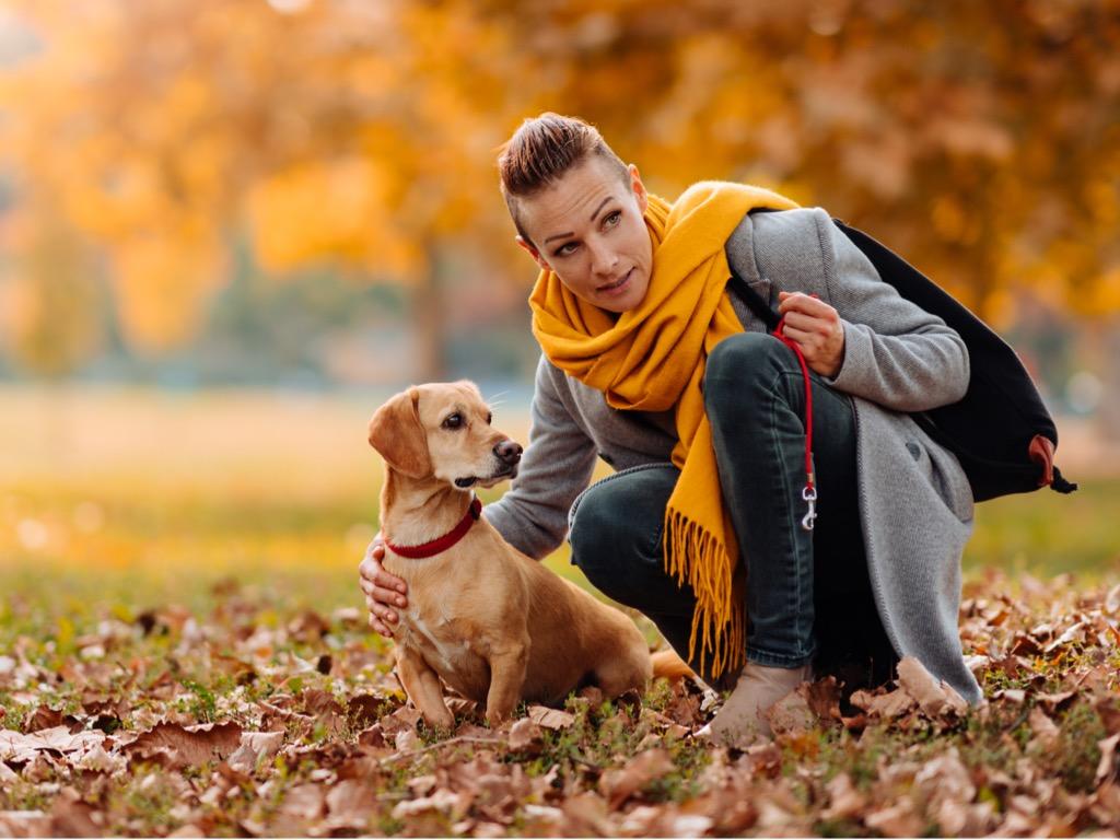 femme qui montre quelque chose à son chien