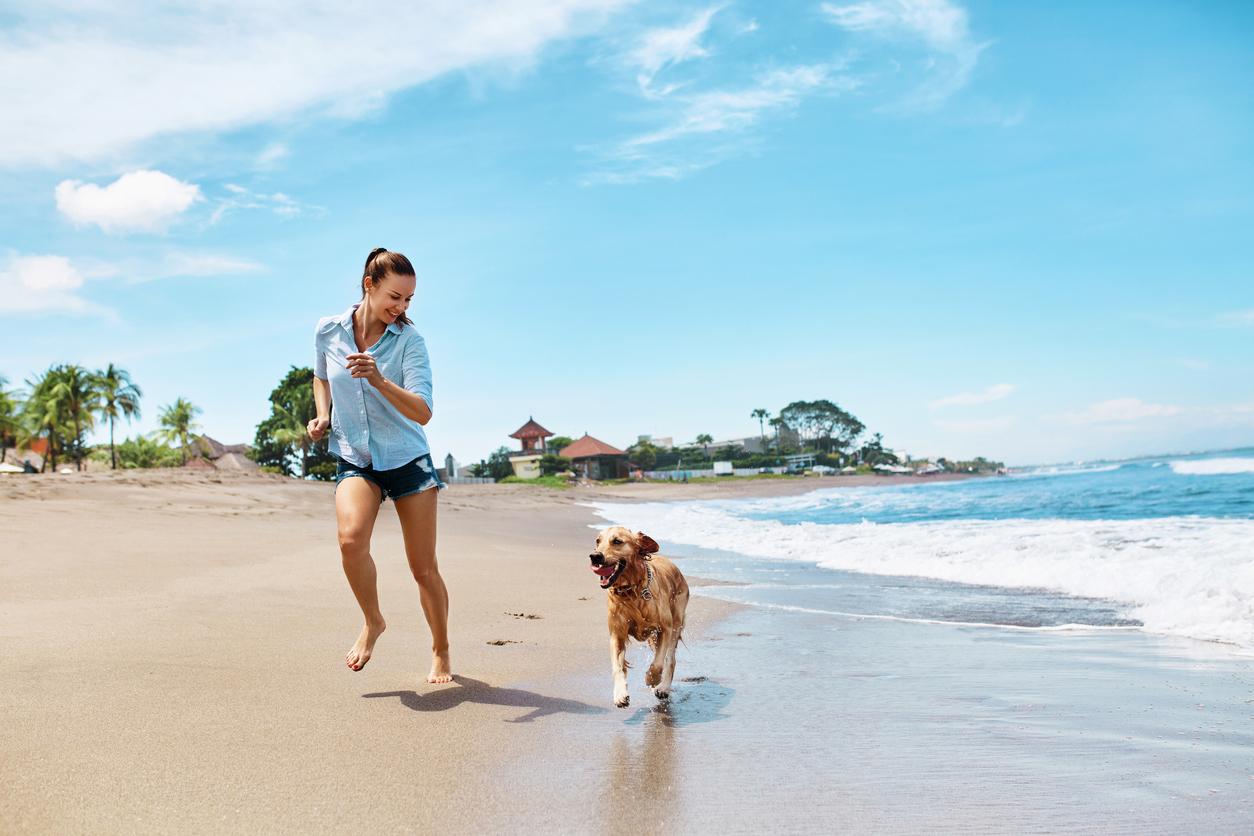 chien qui court au bord de la mer