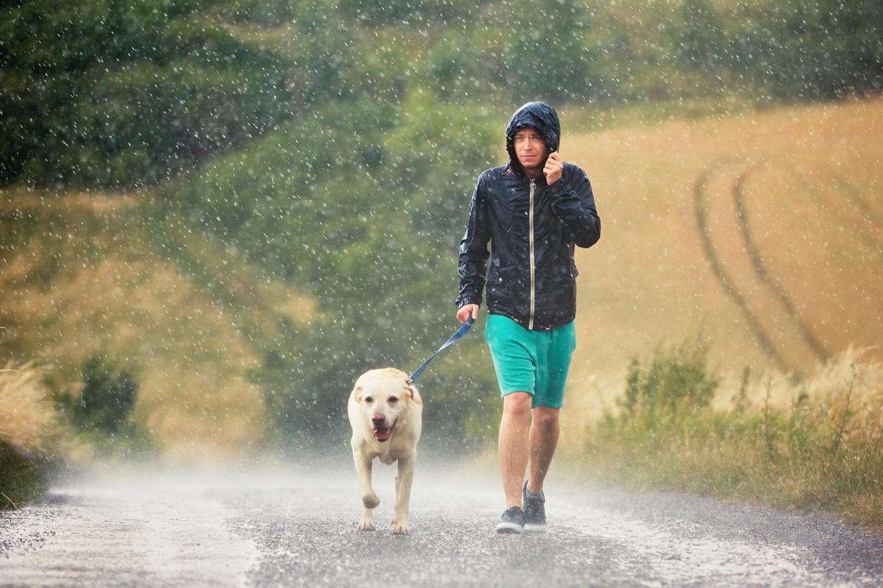 chien et son maître sous la pluie