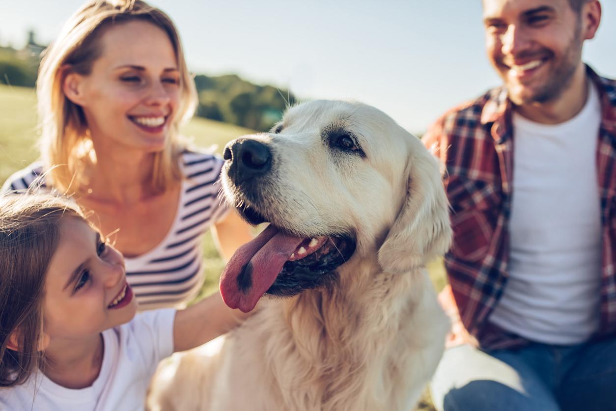 Chien heureux en vacances avec sa famille