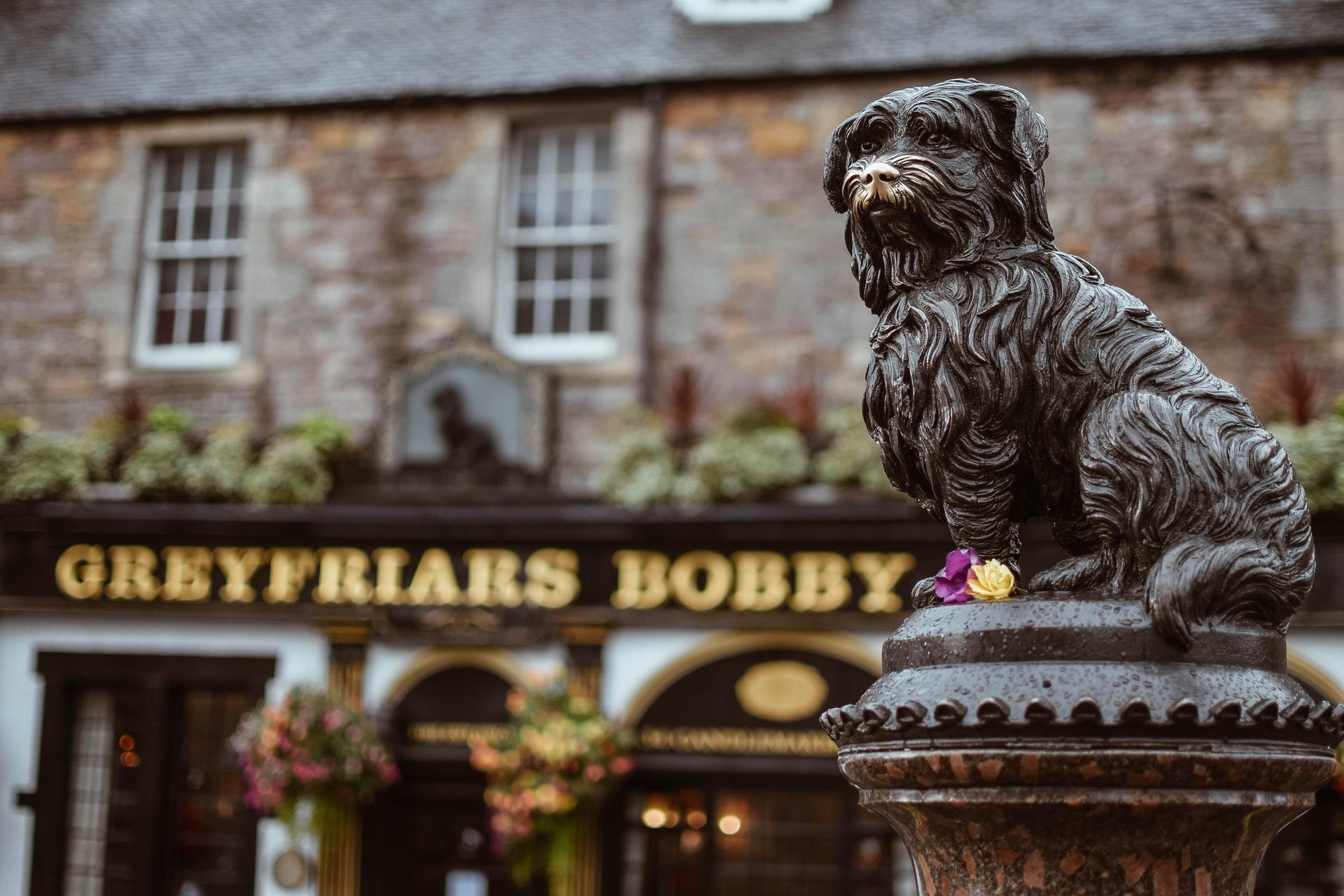 photo de la statue de Greyfriars Bobby avec le restaurant à son nom en fond à Edimbourg