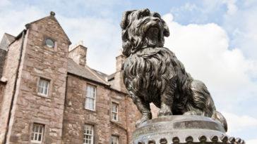 statue du chien Greyfriars Bobby à Edimbourg