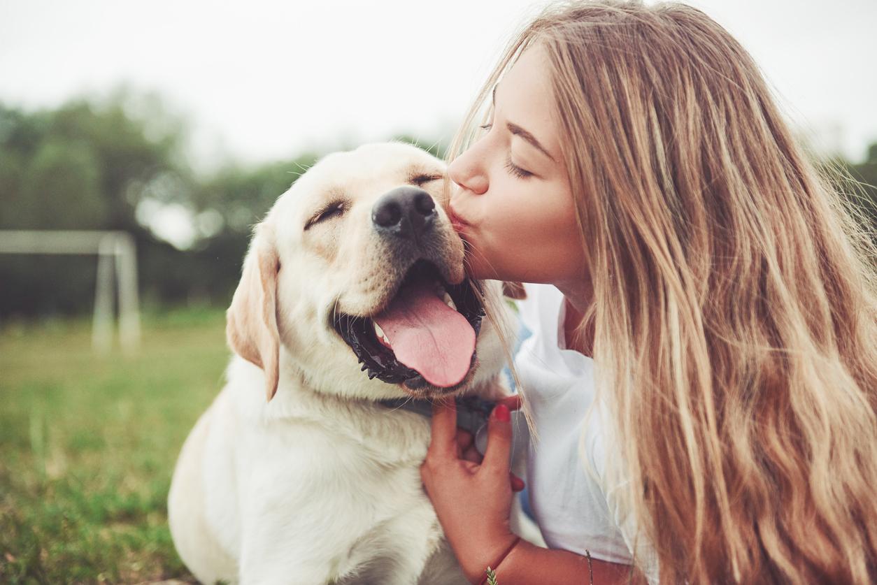 chien labrador avec une jeune femme qui le câline