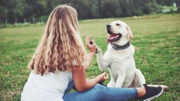 chien et sa maitresse complices