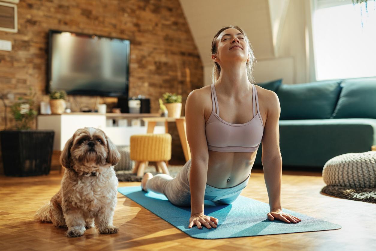 Chien et maîtresse en train de faire du yoga