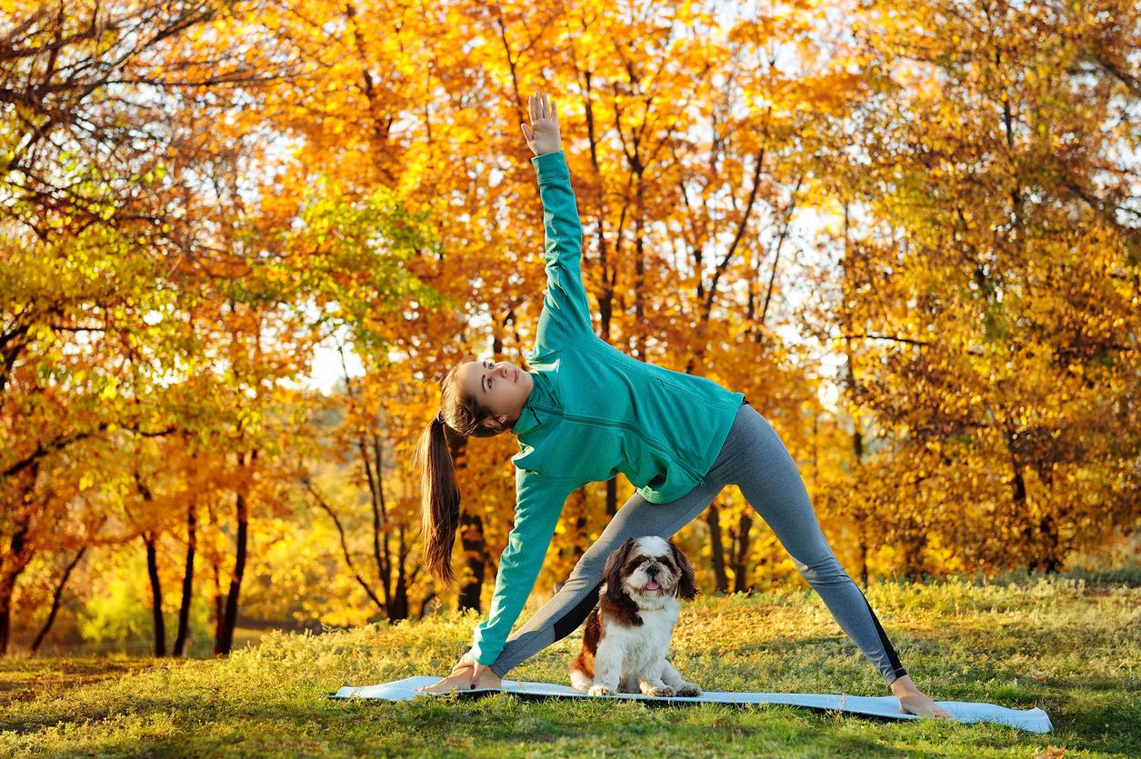 Chien faisant du yoga en extérieur
