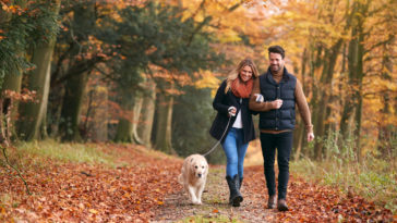 couple qui se promène avec son chien en forêt